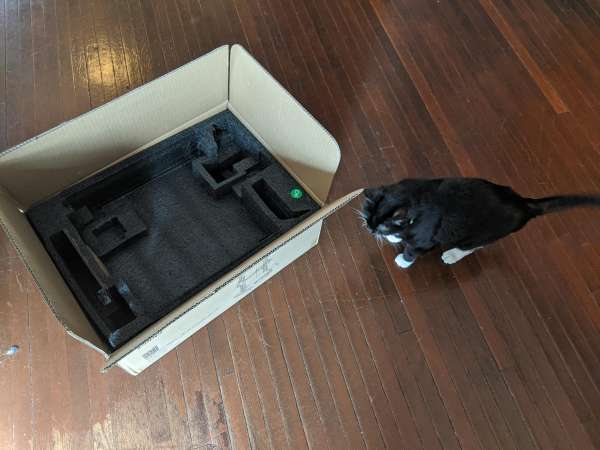 An open box on a wooden floor, a black and white cat approaches
